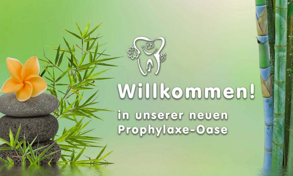 Willkommen in unserer Prophylaxe-Oase